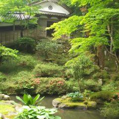 県指定の名勝 来迎寺庭園